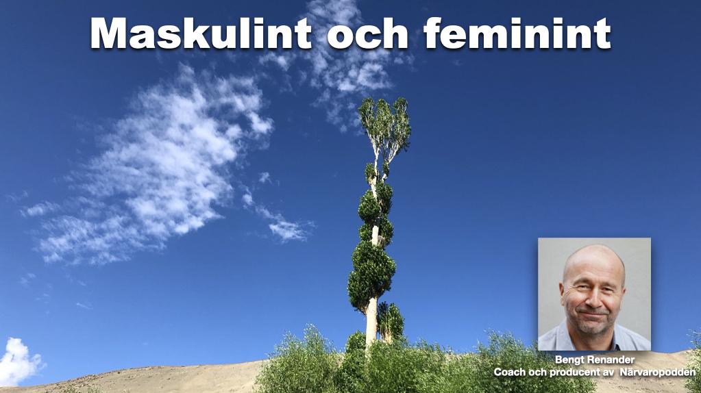 Maskulint & feminint